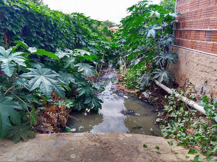 Esgoto a céu aberto em rua de Jericó deixa moradores preocupados