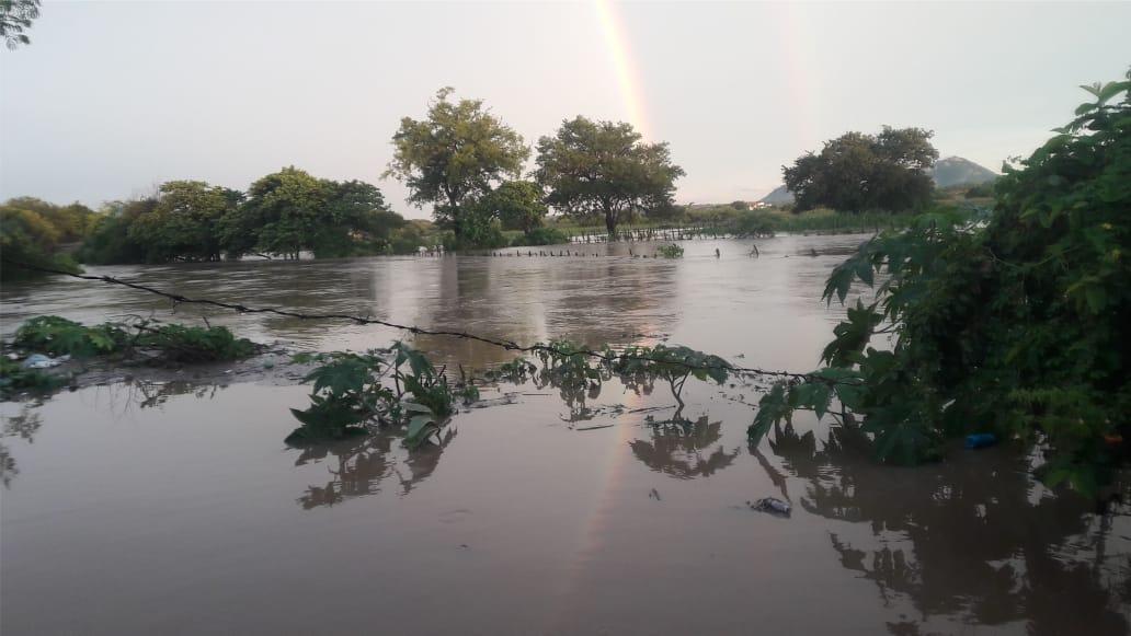 Jericó registra sua maior chuva do ano com 99 milímetros; veja fotos