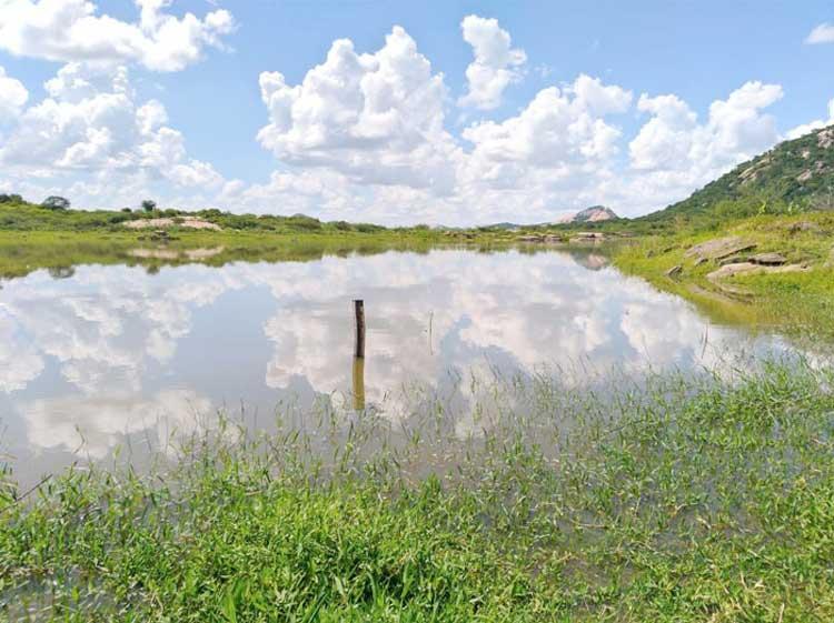 Jericó registra chuva de quase 100 milímetros; açude carneiro aumenta 11 centímetros